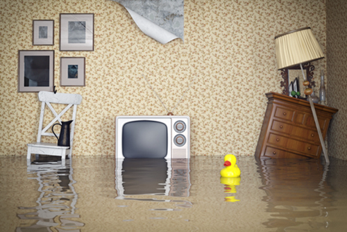 Roberts Insurance Agency of Florida - Flood Insurance - Mt. Dora, Lake County